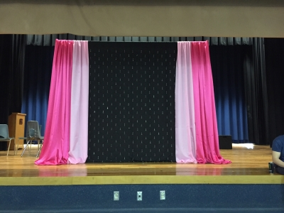 Ombre Pinks Backdrop