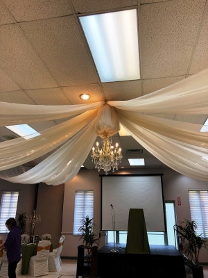 Once Upon A Time/Enchanted Garden-Ceiling Treatment with Heritage Chandelier