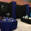 Royal Blue Sequins