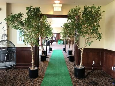 Tree Lined Entranceway-Deer Creek Golf Club