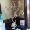 Birch Tree Table Top Arrangements