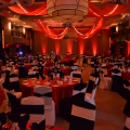 Red Led Room Uplighting