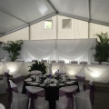Butterfly Valance Backdrop, 4 Seasons Golf & Country Club