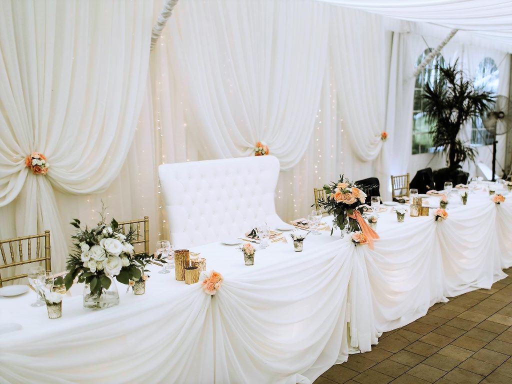 Vertical Drape Backdrop with Waterfall of Lights & Peach Accents