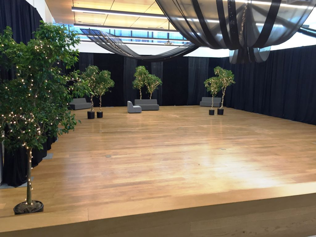 Black Room Draping, Ceiling Swags, Ficus Trees with Fairy Lights 3