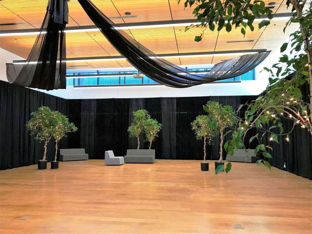 Black Room Draping, Ceiling Swags, Ficus Trees with Fairy Lights 2