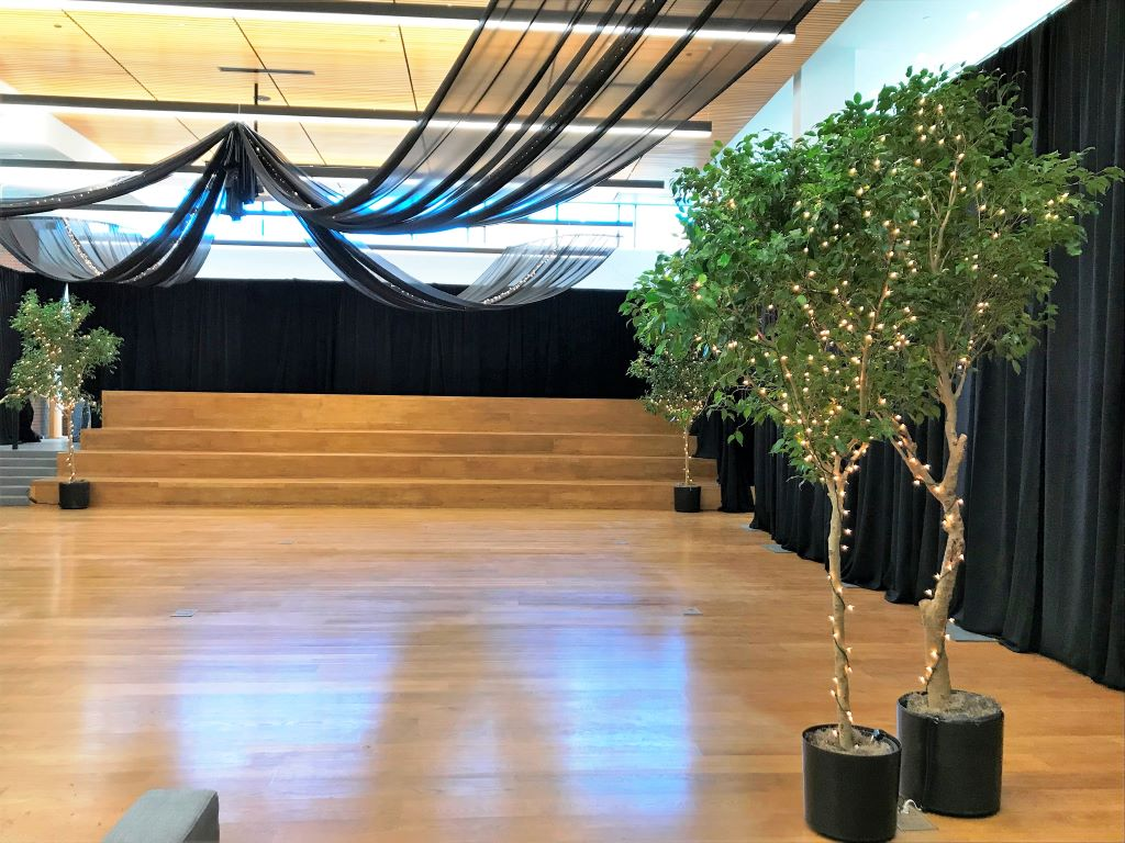 Black Room Draping, Ceiling Swags, Ficus Trees with Fairy Lights