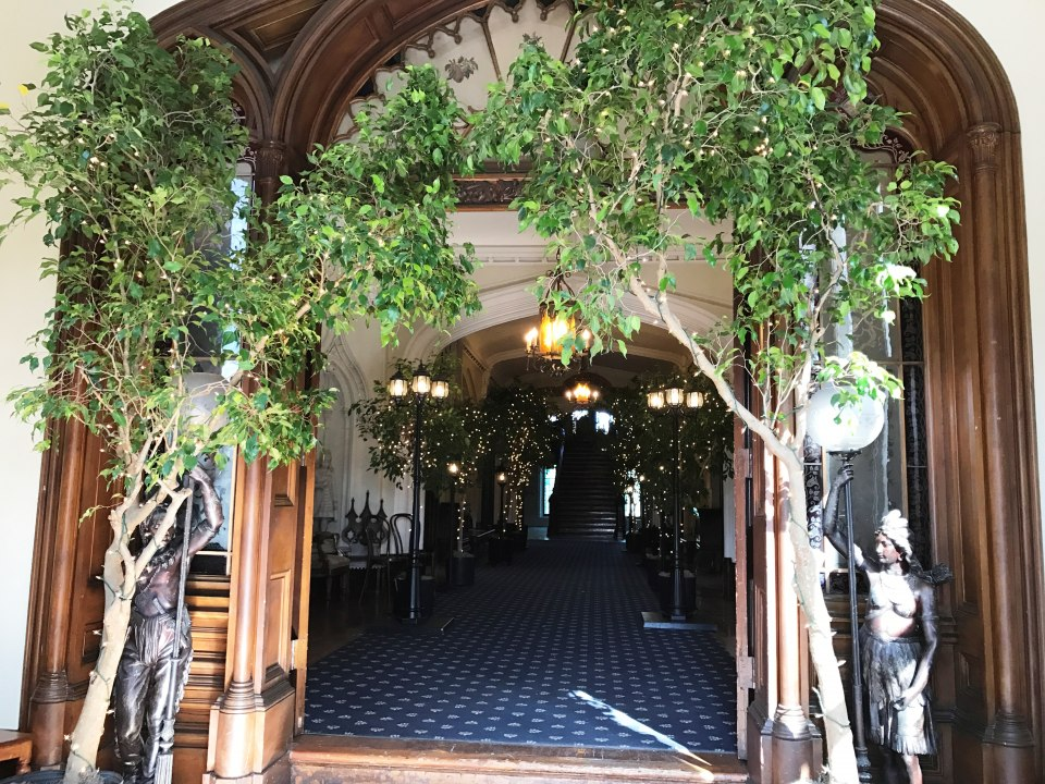 Entranceway with 8'-10' Ficus Trees with Mini Lights
