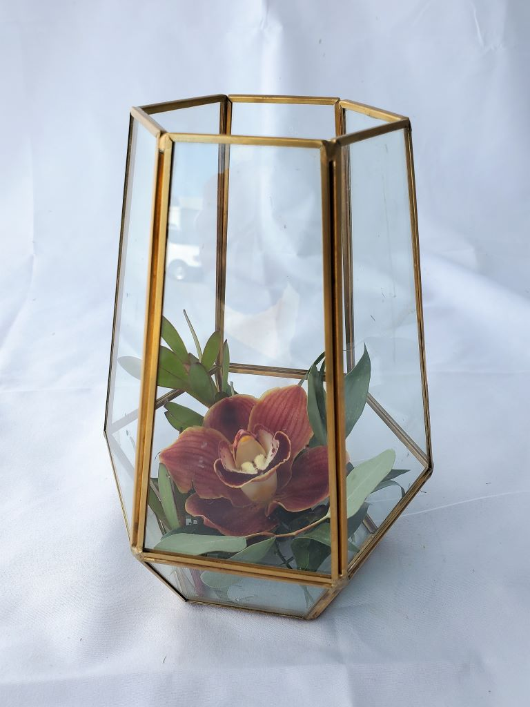 Gold Geo Terrarium with Orchid