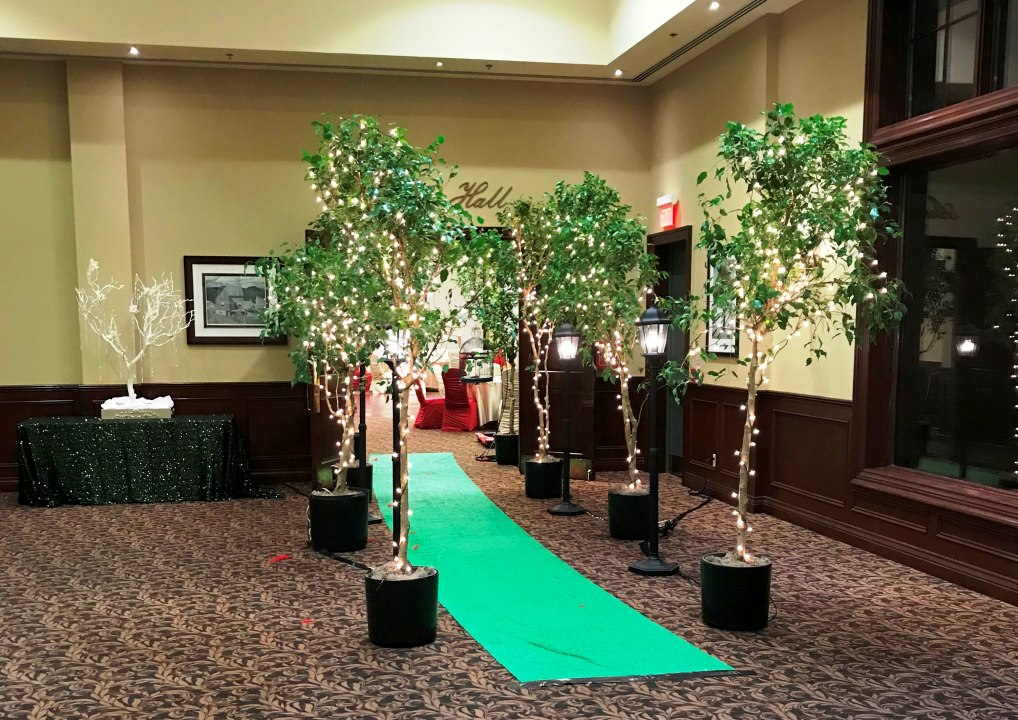 Green Carpet Runner & 8' Benjamina Trees for Rent