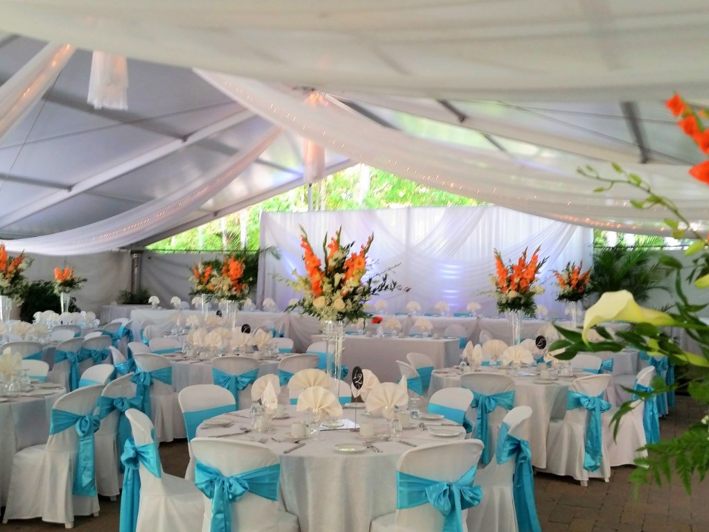 Sheer Tent Swags with Mini Lights & Wedding Backdrop