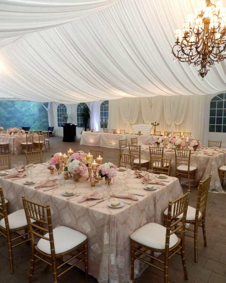 Vertical Drape Backdrop, Tent Liner, Venetian Gold Linens, Nestleton Waters Inn