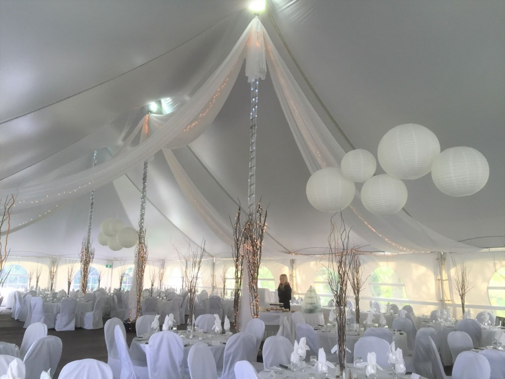 Sheer Swags with Mini Lights , Paper Lanterns, 12' Twig Trees with Fairy Lights