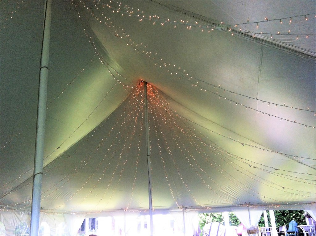 Starry Night Ceiling Pole Tent